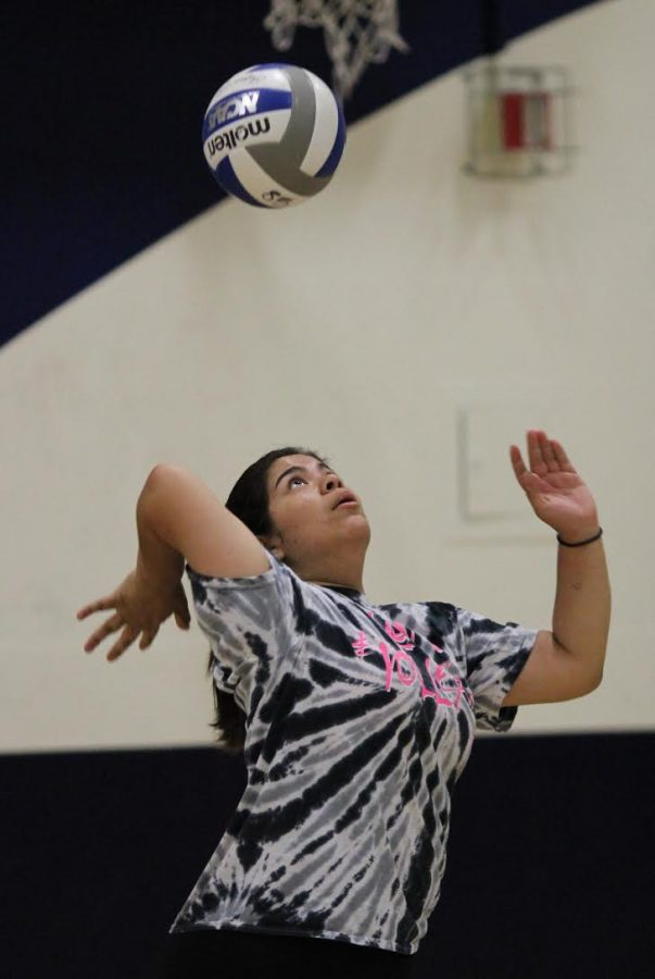 Junior Jessica Salguero prepares to serve the ball to the other side of the court.