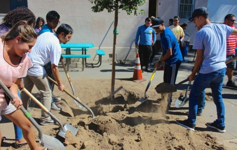 Students plant trees with Los Angeles Beautification Team