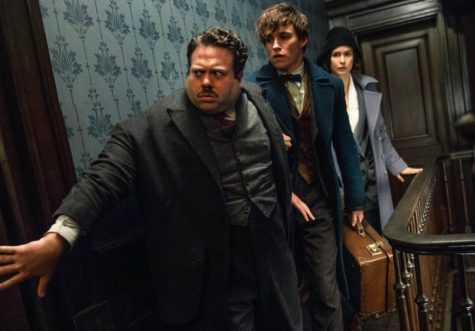 Fantastic Beasts casts a spell on captive audiences