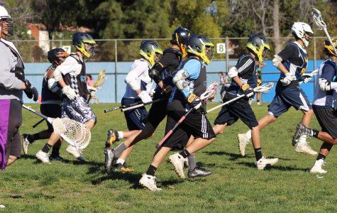Boys lacrosse aims for championships