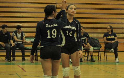 BCCHS girl's volleyball team makes it to playoffs, looks forward to next year