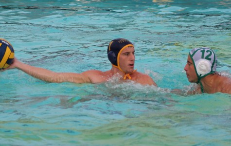 BCCHS boys water polo team loses to Palisades after a heated match up for championship glory