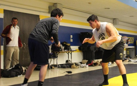 DPMHS wrestler sets eyes on becoming team captain