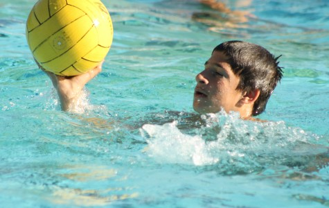 Boys water polo fight for championships, Palisades take them out