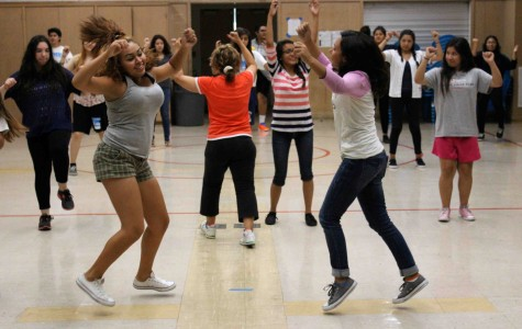 Dance class brings diversity to school