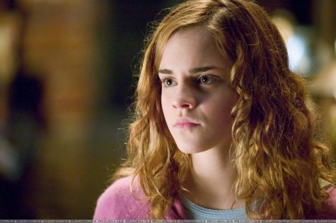 Can you make Hermoine proud and pass this test?