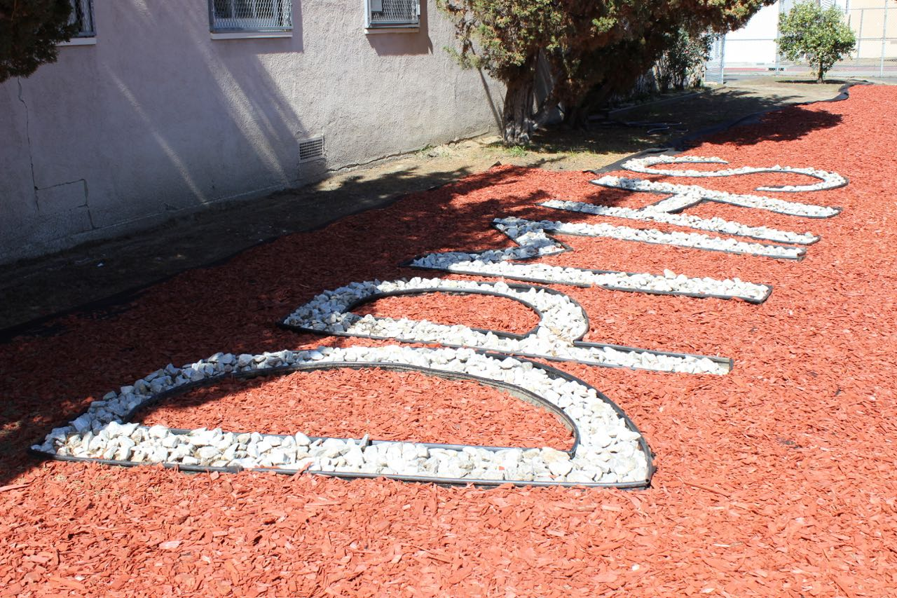 Junior James Young's Eagle Scout service project beautified one of the courtyards.