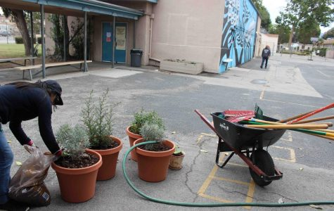 School wide beautification scheduled for May 13