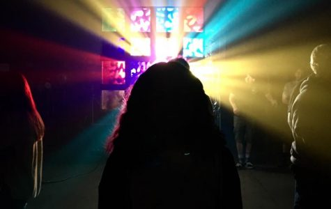 Light show captivates sophomore