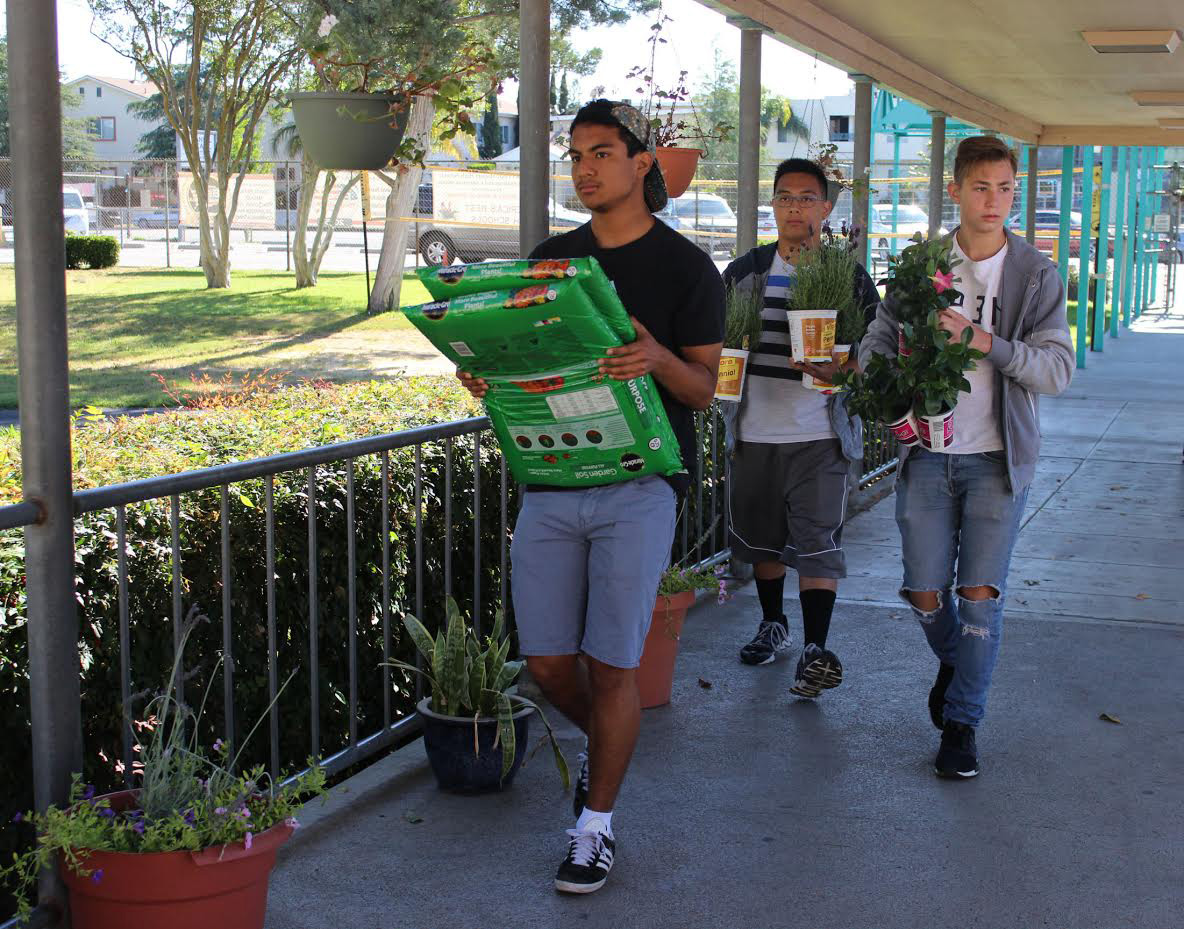 Sparkle Saturday volunteers Kyle Peraza, Elijah Lonnboy and Ethan Zinshteyn carry plants to various sections in the school.