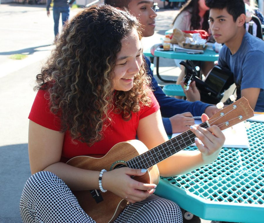 Junior Ceejay Posis practices her ukulele during lunch on Jan. 18.