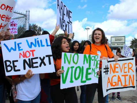 Editorial: Recent student walkouts stir up needed change for gun reform