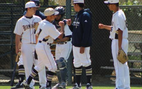 Boys baseball swings into promising season