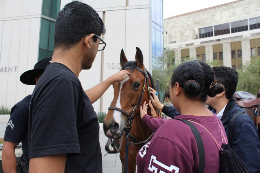 While walking to lunch, students stop to pet the police horse being displayed in front of the police headquarters in downtown Los Angeles.