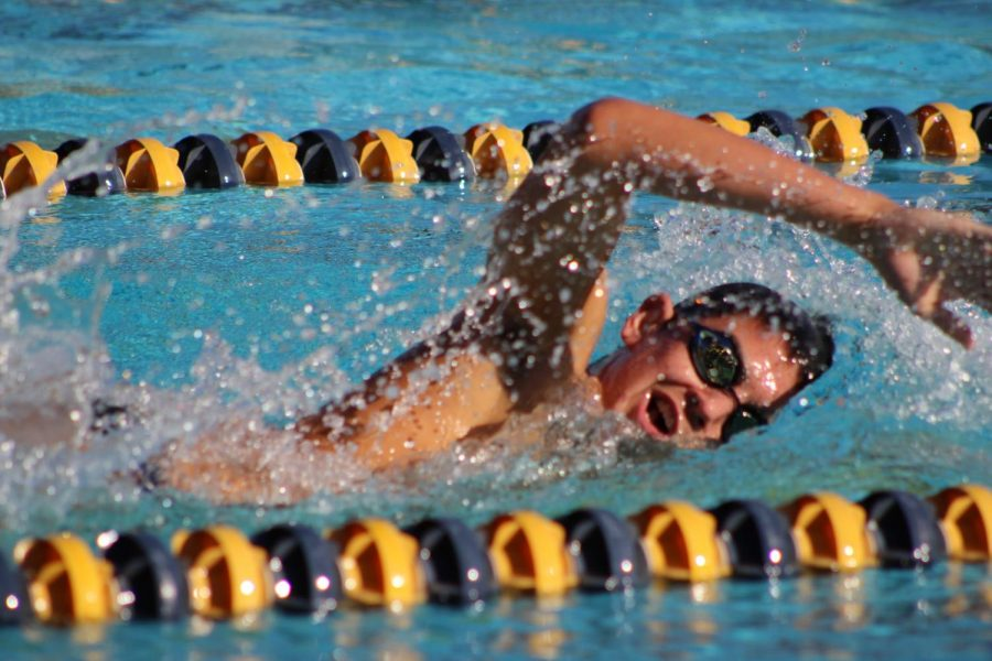 Junior Benjamin Sanchez start his final lap of the boys varsity 500m freestyle on April 3 against Granada Hills Charter High School.