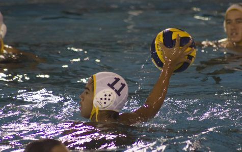 Water polo performance splashes at finals