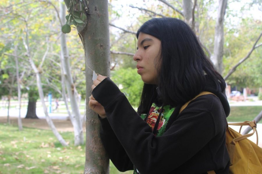 Junior Angie Rumbo reads a note left by the Tree Huggers at the Future Currents: Los Angeles River Festival on Friday's field trip