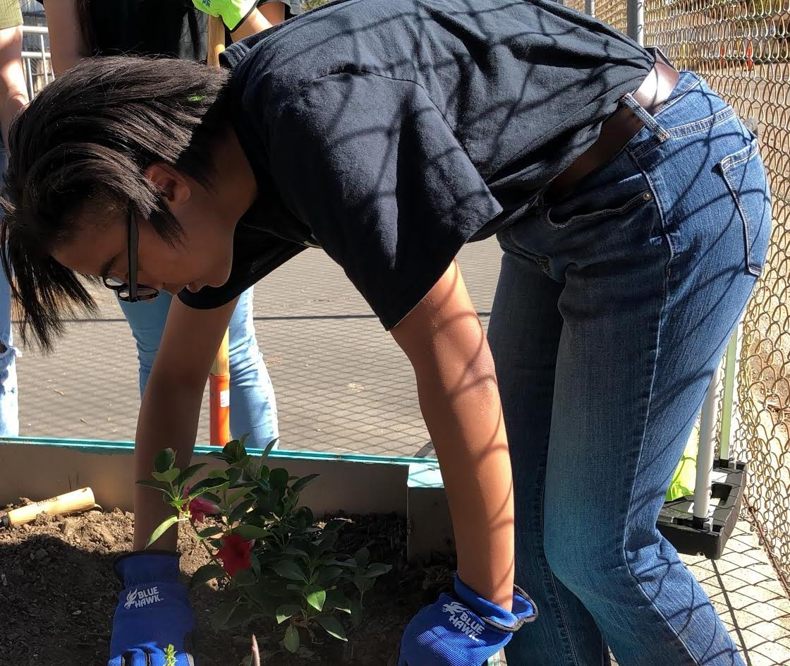 Freshman Naamah Silcott digs a space for flowers to be planted as part of Sparkle Saturday on Nov. 9.