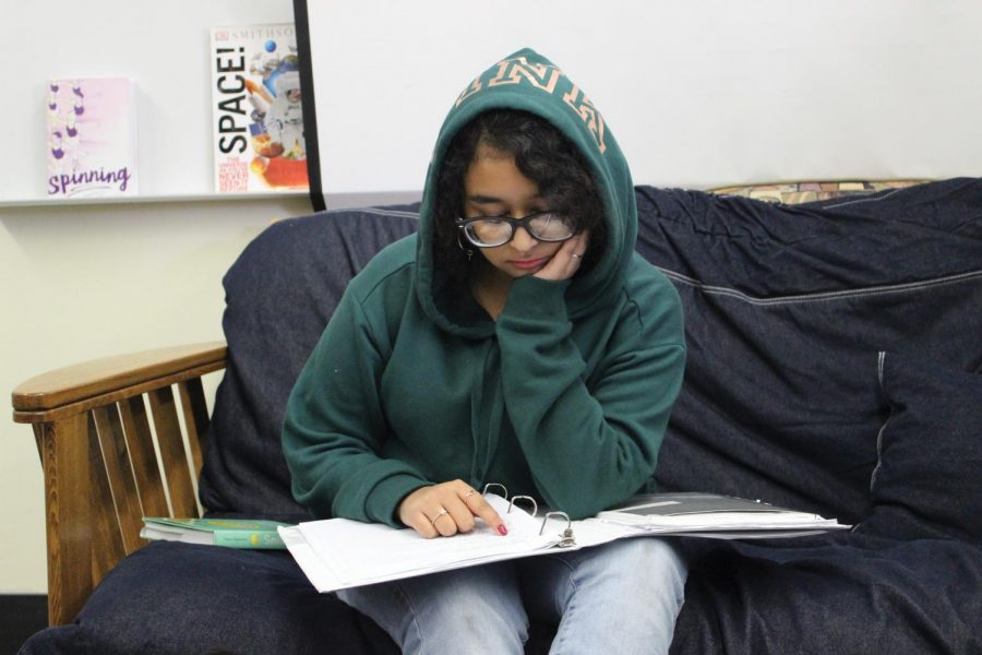 Junior Ariana Islam studies for finals at the library on Dec. 5.