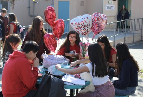 Students at DPMHS celebrate the spirit of Valentine