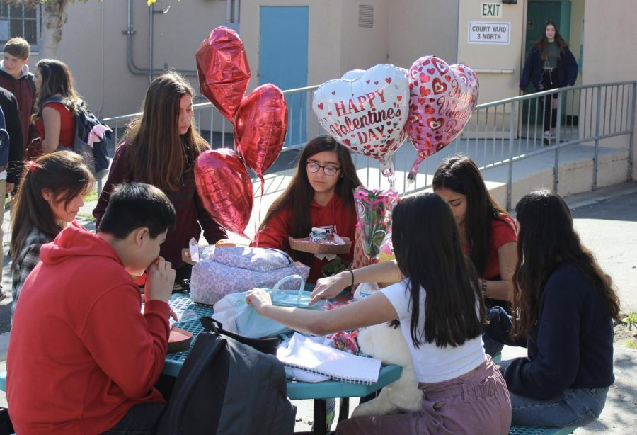 Students at DPMHS celebrate the spirit of Valentine's Day by wearing red, pink and white on Feb. 14.