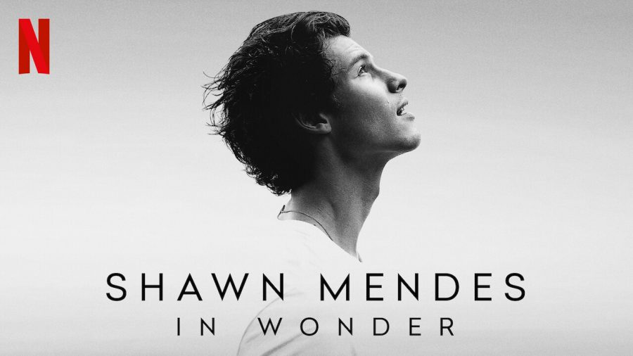 Singer song-writer Shawn Mendes gives us insight into the limelight and takes us on what his life began as and what it has become in his documentary coming to Netflix on Nov. 23.